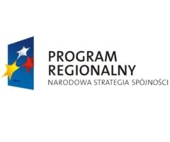 logo narodowa strategia